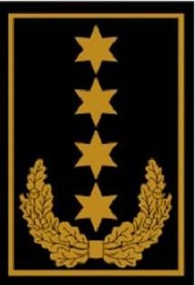 RANGABZEICHEN Bundesbereitschaftsleiter