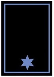 RANGABZEICHEN Truppführer/Staffelführer