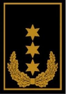 RANGABZEICHEN Stellv. Bundesbereitschaftsleiter