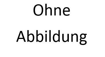 Rückenschild silber BETRIEBSSANITÄTER 42x8cm