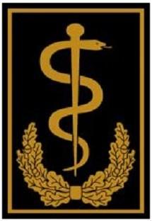 RANGABZEICHEN Bundesarzt