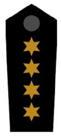 Schulterklappen Bezirksbereitschaftsleiter ehrenhalber