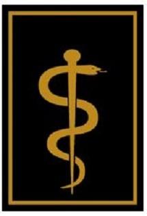 RANGABZEICHEN Arzt auf KV-/Bezirks-Ebene