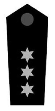 Schulterklappen Stellv. Bereitschaftsleiter ehrenhalber