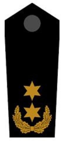 Schulterklappen Landesbereitschaftsleiter ehrenhalber