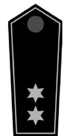 Schulterklappen Gruppenleiter