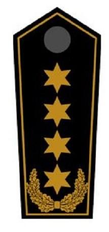 Schulterklappen Bundesbereitschaftsleiter
