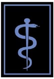 RANGABZEICHEN Arzt in Einsatzformationen