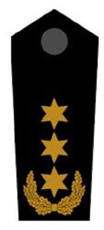 Schulterklappen Stellv. Bundesbereitschaftsleiter ehrenhalber