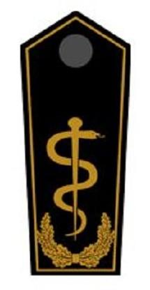 Schulterklappen Arzt auf LV-Ebene