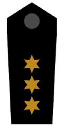 Schulterklappen Stellv. Bezirksbereitschaftsleiter ehrenhalber