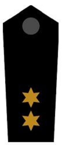 Schulterklappen Kreisbereitschaftsleiter ehrenhalber