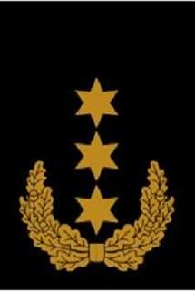 RANGABZEICHEN Stellv. Bundesbereitschaftsleiter ehrenhalber
