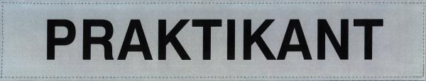 Rückenschild silber PRAKTIKANT 42x8cm
