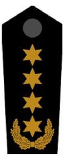 Schulterklappen Bundesbereitschaftsleiter ehrenhalber